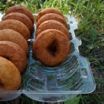 #Newinthecity: Fall in Ann Arbor With Apple Orchards Donuts And Cider
